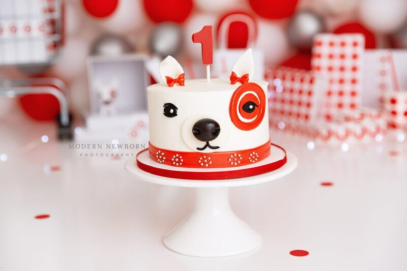Clearwater Fl,  Custom Target Dog Smash Cake