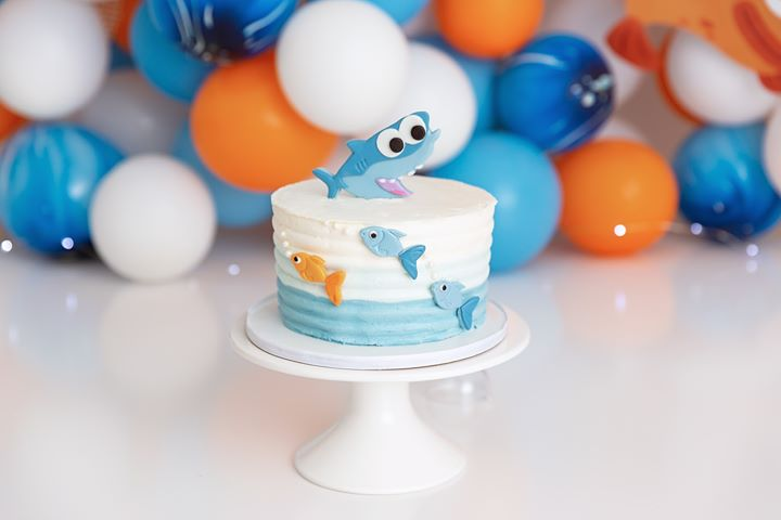 Clearwater Fl,  Custom Baby Shark Smash Cake