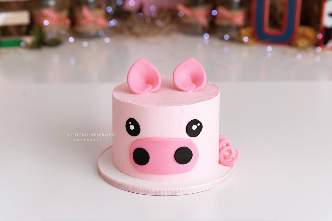 Clearwater Fl,  Custom Pig Smash Cake
