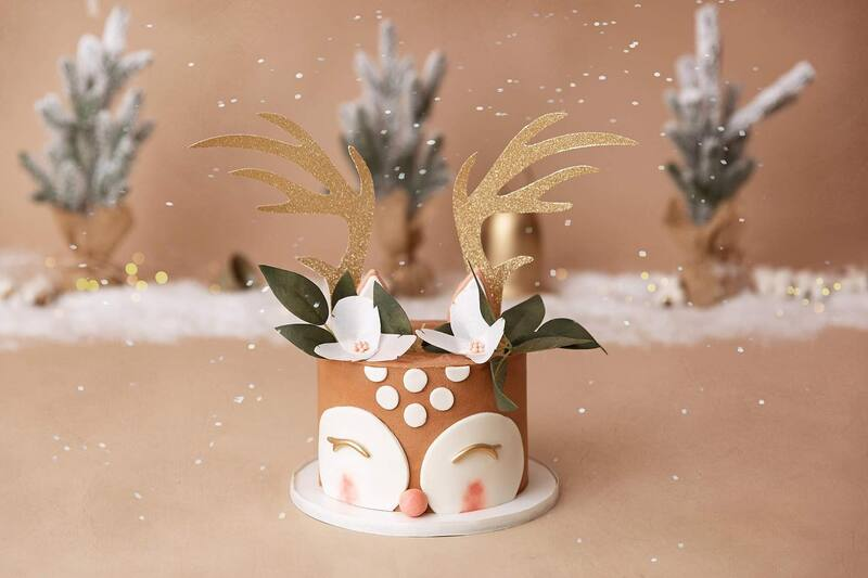 Clearwater Fl,  Custom Reindeer Smash Cake