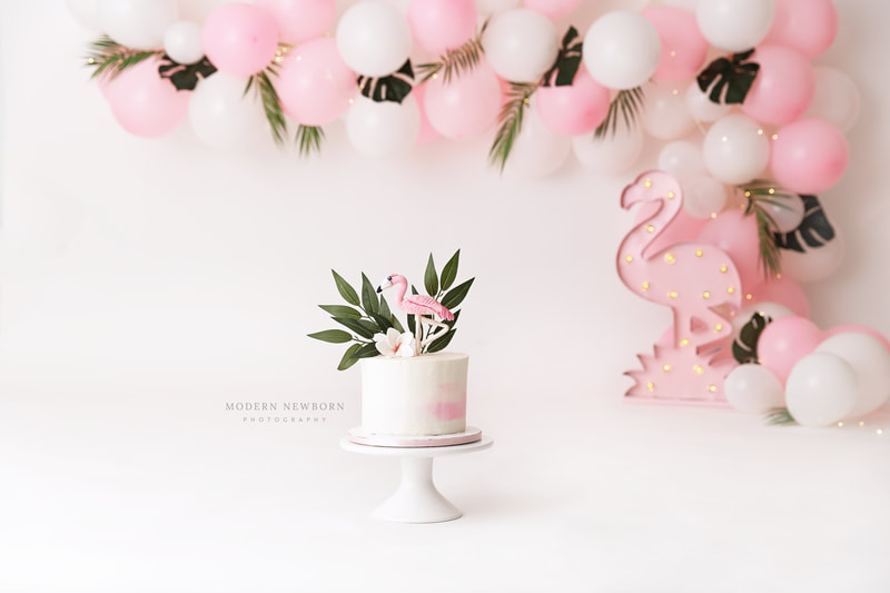 Flamingo Clearwater Fl,  Custom   Cake